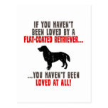Perro perdiguero Plano-Revestido Postales
