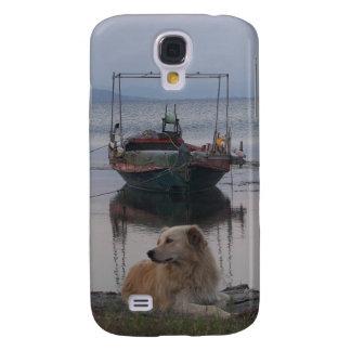 Perro perdiguero por el mar