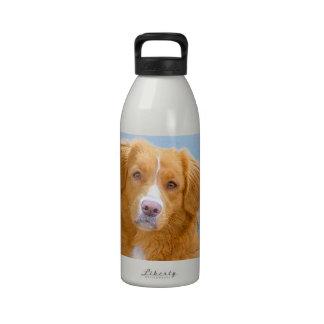 Perro perdiguero tocante del pato de Nueva Escocia Botella De Agua Reutilizable