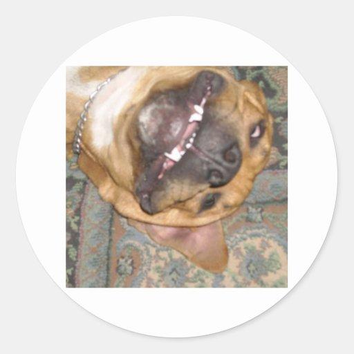 perro perezoso pegatina redonda
