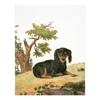 Perro - perro de aguas de juguete continental membretes personalizados