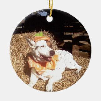 perro, perro, diversión, Luna dice, Halloween Adorno Navideño Redondo De Cerámica