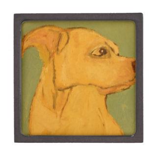 perro, perros, mascotas, ginsburg de eric, worldof cajas de joyas de calidad