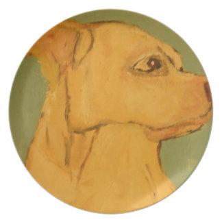 perro, perros, mascotas, ginsburg de eric, worldof plato
