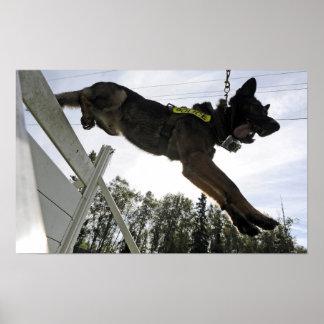 Perro policía del pastor alemán póster