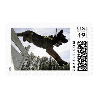 Perro policía del pastor alemán sello