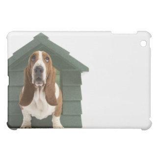 Perro por la caseta de perro