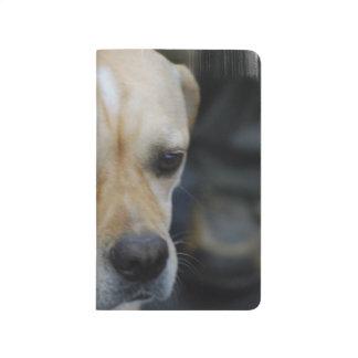 Perro portugués del indicador cuaderno grapado