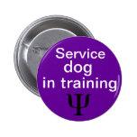 perro psiquiátrico del servicio en botón del entre pin