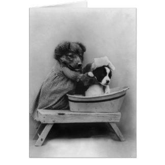 Perro que baña el perro tarjeta pequeña