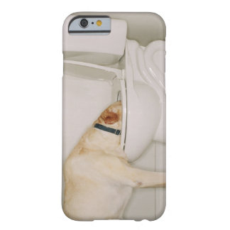 Perro que bebe fuera de retrete funda para iPhone 6 barely there