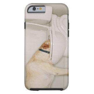 Perro que bebe fuera de retrete funda para iPhone 6 tough