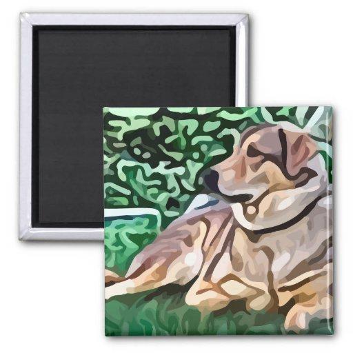 perro que coloca la pintura iman para frigorífico