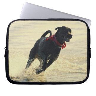 Perro que corre en agua funda ordendadores
