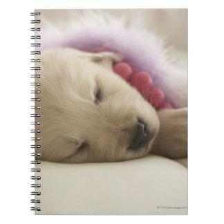 Perro que duerme en cama libro de apuntes