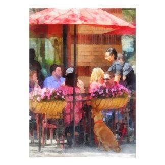 Perro que espera en el café Hoboken NJ Invitacion Personalizada