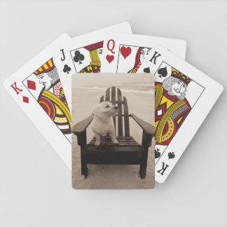 Perro que goza de la playa barajas de cartas