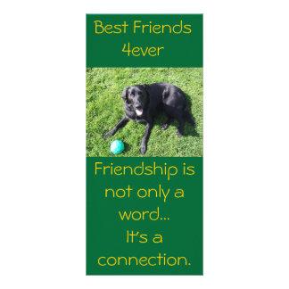 Perro que juega con la bola - mejores amigos felic tarjeta publicitaria a todo color