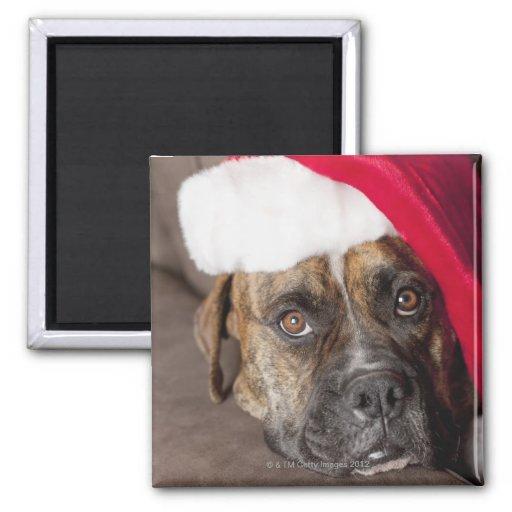 Perro que lleva el gorra de Santa Imán Cuadrado