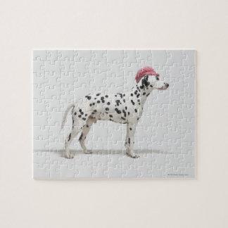 Perro que lleva un gorra puzzle