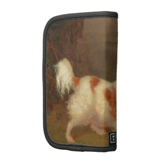 perro que pinta el perro de aguas de Blenheim Organizadores