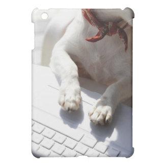 Perro que pone sus manos en un ordenador portátil