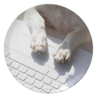 Perro que pone sus manos en un ordenador portátil platos para fiestas