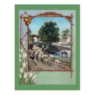 Perro que reúne la trayectoria de las ovejas abajo postal