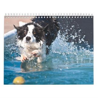 perro que salpica en calendario del agua