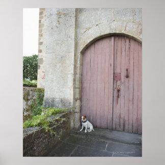 Perro que se sienta delante de puertas cerradas impresiones