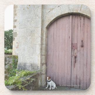 Perro que se sienta delante de puertas cerradas posavasos