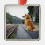 Perro que se sienta en la estación de tren adorno para reyes