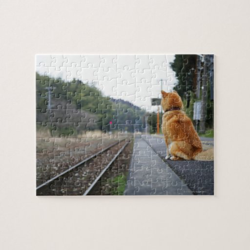 Perro que se sienta en la estación de tren puzzles