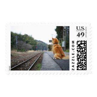 Perro que se sienta en la estación de tren franqueo