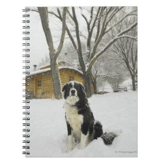 Perro que se sienta en nieve con la cabaña de made libretas espirales