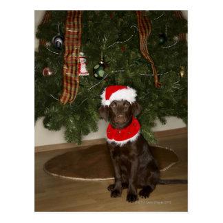 Perro que se sienta por un árbol de navidad postal