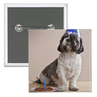 Perro que tiene cumpleaños pin cuadrada 5 cm