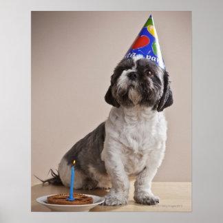 Perro que tiene cumpleaños póster