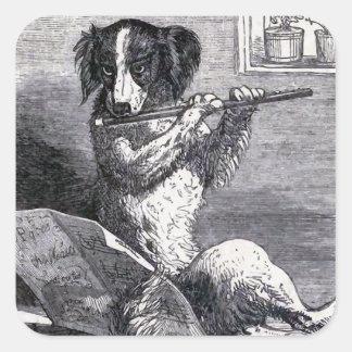 """""""Perro que toca ejemplo del vintage de la flauta"""" Calcomania Cuadradas"""