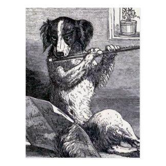 """""""Perro que toca ejemplo del vintage de la flauta"""" Postal"""