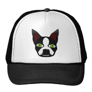 Perro retro del rescate de Boston Terrier Gorros