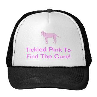 Perro rosado del sabueso gorra