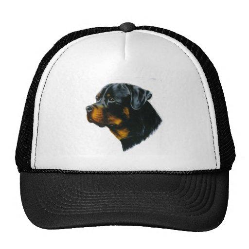 perro-rottweiler gorros