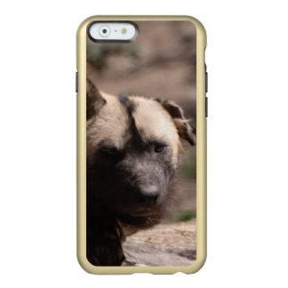 Perro salvaje africano funda para iPhone 6 plus incipio feather shine