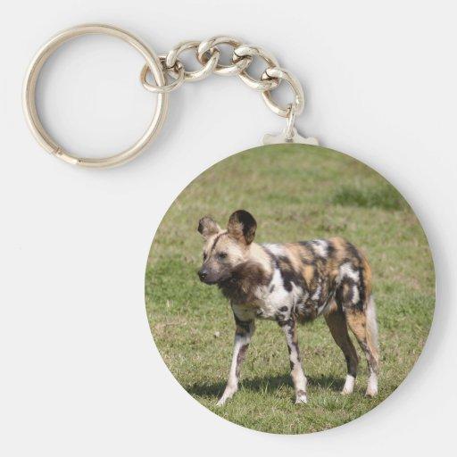 Perro salvaje africano llaveros