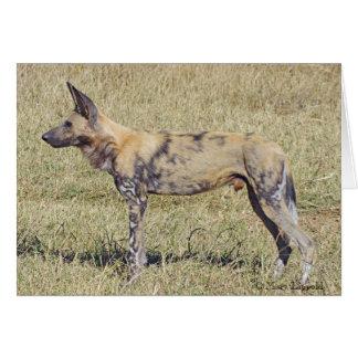 Perro salvaje africano tarjeta de felicitación