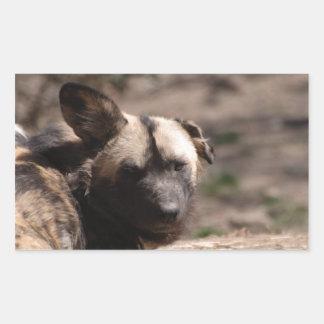 Perro salvaje con el oído flojo rectangular altavoces