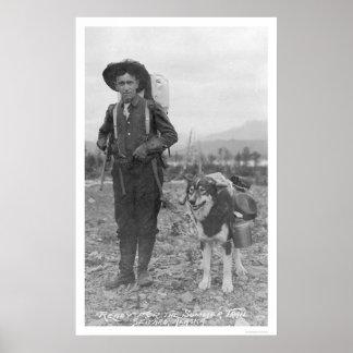 Perro Seward Alaska 1904 del prospector Poster