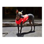 Perro sin pelo peruano postal