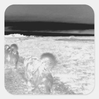Perro Sledging Calcomanía Cuadrada